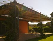 Stationary Canopies by Almax